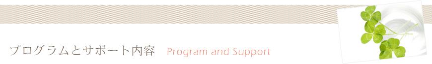 プログラムとサポート内容